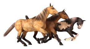 Render Horses Running Stock Images