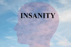 Insanity - mental concept. Render illustration of INSANITY title on head silhouette, with cloudy sky as a background Stock Images