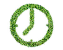 Render natural grass leaf clock symbol Stock Images