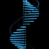Rendered blue xray transparent staircase. 3D rendered blue xray transparent staircase Stock Images