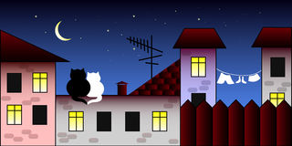 Rendezvous. Two cats on the roof Royalty Free Stock Photos