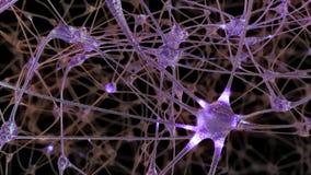 a rendição 3D de uma rede de pilhas do neurônio e de sinapses no cérebro através de que impulsos bondes e descarrega a passagem ilustração royalty free