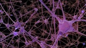 a rendição 3D de uma rede de pilhas do neurônio e de sinapses no cérebro através de que impulsos bondes e descarrega a passagem ilustração stock