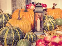 rendição 3d decoração exterior da ação de graças com abóboras e maçãs Imagens de Stock Royalty Free
