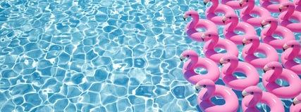 rendição 3d muito flamingo flutua em uma associação ilustração royalty free