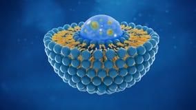 Rendição da pilha 3D da estrutura do lipossoma ilustração royalty free