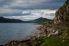Rendier bij een fjord Royalty-vrije Stock Afbeelding