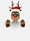 Rendier met rode neus en Kerstmanhoed. Stock Afbeeldingen