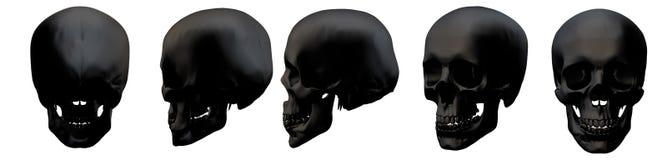 rendu 3d de crâne Illustration de Vecteur