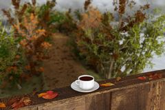 rendu 3d de tasse de café sur le rebord de fenêtre en bois avec des feuilles i Photo stock