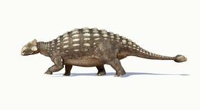 Rendu 3D Photorealistic d'un Ankylosaurus. Vue de côté. Photographie stock