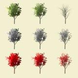 Rendu de l'arbre 3d d'Aspen d'isolement pour le concepteur de paysage Image stock