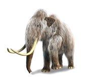 Rendu Photorealistic de 3 D d'un mammouth. Photographie stock libre de droits