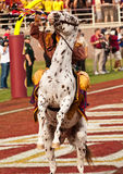 Renegade Rears Up. Tallahassee, Florida - Oct. 27, 2012:  FSU mascot, Chief Osceola, commands his horse, Renegade, to rear up to officially start the football Royalty Free Stock Image