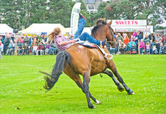 Renegade Rider at Grantown on Spey Show. Royalty Free Stock Images