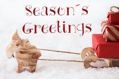 Renen med släden på snö, text kryddar hälsningar Arkivfoto