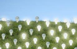 Renewable Energy. Lighbulbs growning on a field - Renewable Energy Stock Photography