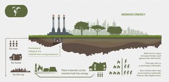 Renewable energy from biomass energy. Illustrated infographics stock illustration