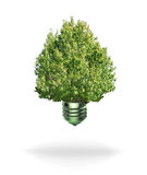 Renewable energy bulb. Isolated white background and shadow Stock Photography