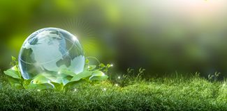 Renewable energy concept Earth Day or environment protection Hands protect forests that grow on the ground and help save the world