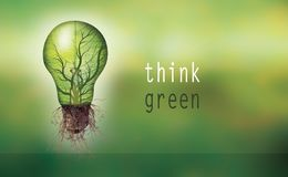 Renewable energy concept - Eco light bulb with text -think green- Royalty Free Stock Photo