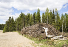 Renewable energy in Finland. Renewable energy stocking next to forest in Finland stock photos