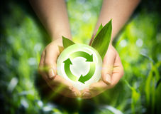 Renewable energy in the hands. Environment stock images