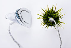 Renewable energy. Iron plugged into a plant. Renewable energy concept Royalty Free Stock Images
