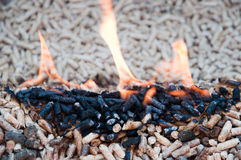 Renewable energy. Pine pellets in flames- selective focus on the heap Stock Photos