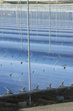 Renewable Energy: Solar as the best way to produce green energy Stock Photos