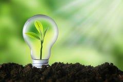 Renewable energy, sustainability, ecology concept.