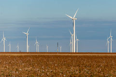 Renewable energy - wind turbines with cotton fields in the foreg Royalty Free Stock Photos