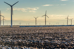 Renewable energy - wind turbines with cotton fields in the foreg Stock Photo