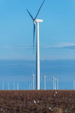 Renewable energy - wind turbines with cotton fields in the foreg Stock Images