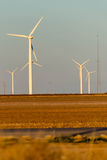 Renewable energy - wind turbines with cotton fields in the foreg Stock Photos