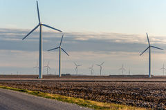 Renewable energy - wind turbines with cotton fields in the foreg Stock Photography