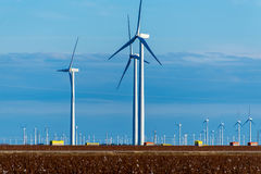 Renewable energy - wind turbines with cotton fields in the foreg Royalty Free Stock Photography