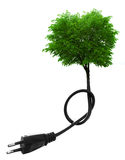 Renewable green energy concept. Green tree growing from electric cable isolated on white. Renewable energy and ecology concept royalty free stock images