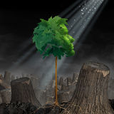 Renewal And Hope. Life and recovery concept as a green leaf tree shaped as a human head growing out of landscape of chopped forest as survival symbol for Royalty Free Stock Photo