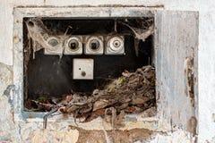 Renfoncement électrotechnique avec de vieux fusibles Photographie stock libre de droits