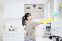 Rengörande fönster för ung hushållerska i kök arkivbilder