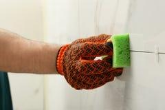 Rengörande skarv för man mellan keramiska tegelplattor med svampen på väggen, closeup arkivfoto