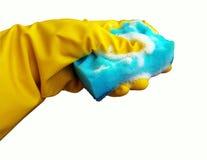 Rengörande svamp och skyddande rubber handskar Arkivbild