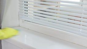 Rengörande tvättande fönsterfönsterbräda med en sanitär sprej och en svamp vid en kvinnas hand i gul gummihandske stock video