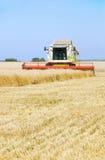 rengörande wheaten combinefält Royaltyfria Bilder
