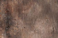 Rengöringen och slätar textur av trädet royaltyfria foton