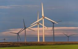 Reng?ring och f?rnybara energik?llor royaltyfria foton