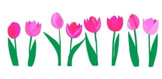 Reng?ringsduk Upps?ttningen av samlar r?da rosa gula tulpanblommor stock illustrationer