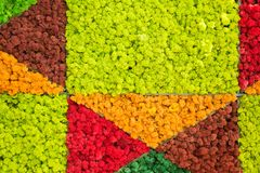 Reniferowego mech ?ciany, czerwieni, pomara?cze i zieleni ?cienna dekoracja robi? reniferowego liszaju Cladonia rangiferina, domo fotografia stock