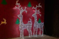 Reniferowi bożonarodzeniowe światła Zdjęcie Royalty Free
